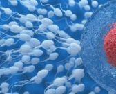 استخدام الهاتف لقياس جودة الحيوانات المنوية Spermiogramm