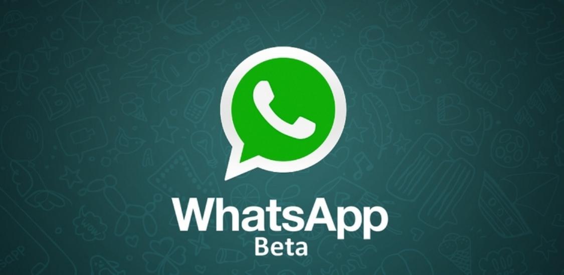 اكتشف ميزة الاقتباس الجديدة على تطبيق واتساب whatsapp