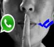 الحل لقراءة رسائل واتس أب ،ميسنجر.. دون ظهور العلامة الزرقاء