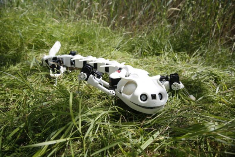 اكتشف روبوت عجيب يحاكي عظاية (فيديو)