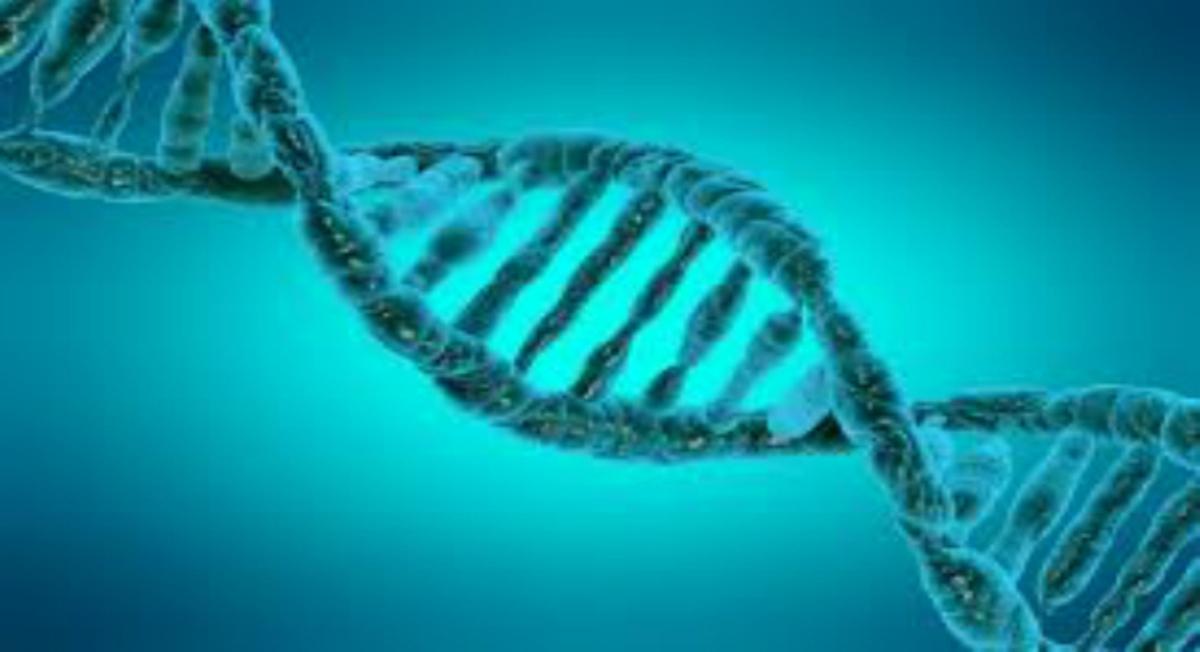 هكذا تسعى مايكروسوفت لتخزين البيانات على الحمض النووي Data storage