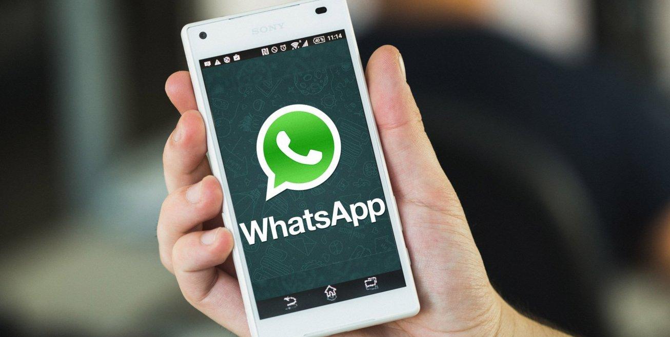 واتس أب تطلق خاصية الرد الأتوماتيكي وميزات أخرى قادمة whatsapp